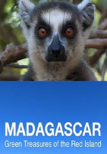 Madagascar the green island