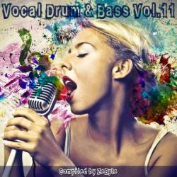 VA - Vocal Drum Bass Vol.11 [Compiled by Zebyte]
