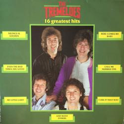 The Tremeloes 16 Greatest Hits (Vinyl rip 24 bit 96 khz)