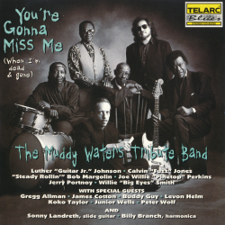 The Muddy Waters Tribute Band - You're Gonna Miss Me (When I'm Dead Gone)